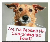 contaminatedfood.jpg